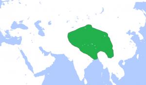 Piquée sur Wikipédia